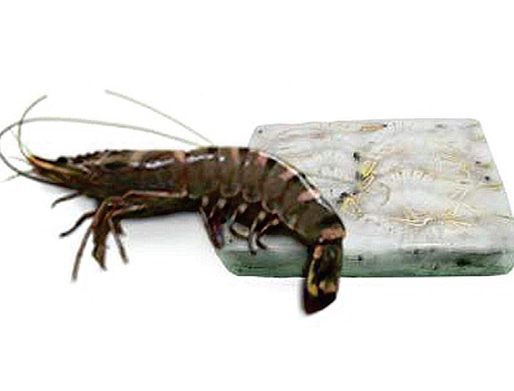 shrimps hoso
